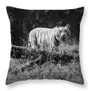 Big Cat In The Woods Throw Pillow