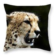 Big Cats 102 Throw Pillow