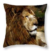 Big Cats 69 Throw Pillow