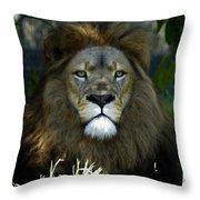 Big Cats 79 Throw Pillow