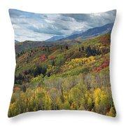 Big Cottonwood Canyon Fall Colors Throw Pillow