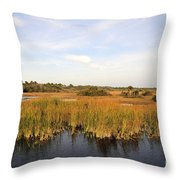 Big Cypress Landscape Number Six Throw Pillow