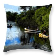 Big Cypress Outing Throw Pillow