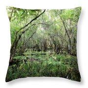 Big Cypress Preserve Throw Pillow