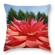Big Dahlia Flower Blooming Summer Floral Art Prints Baslee Troutman Throw Pillow