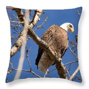 Big Eagle Throw Pillow