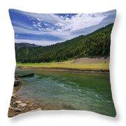 Big Elk Creek Throw Pillow