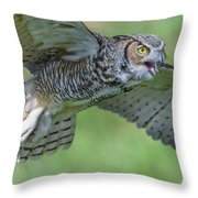 Big Eyes... Throw Pillow