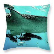 Big Fish Throw Pillow