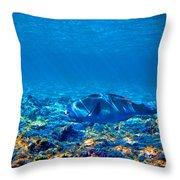 Big Fish. Underwater World. Throw Pillow
