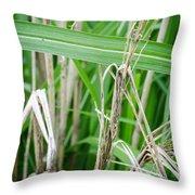 Big Grass Blade Throw Pillow