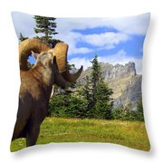 Big Horn 3 Throw Pillow