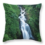 Big Island Watefall Throw Pillow