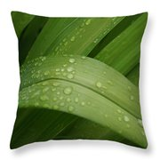 Big Lily Throw Pillow