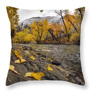 Big Lost Autumn Color Throw Pillow