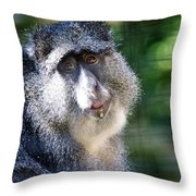 Big Lunch  Throw Pillow