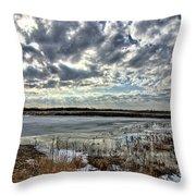 Big Marsh Spring Thaw 2 Throw Pillow
