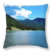 Big Meadows Throw Pillow