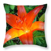 Big Orange Throw Pillow