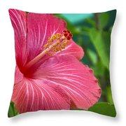 Big Pink Hibiscus Throw Pillow