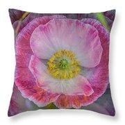 Big Poppy 4 Throw Pillow