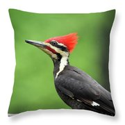 Big Red Throw Pillow