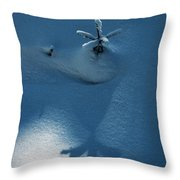 Big Shadow Of A Small Tree On The Snow Throw Pillow