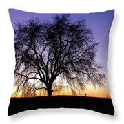 Big Sky - New Mexico Throw Pillow
