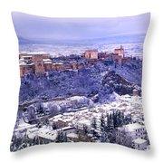 Big Snow In The Alhambra Granada  Throw Pillow