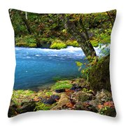 Big Spring Throw Pillow