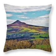 Big Sugarloaf Mountain Throw Pillow