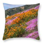 Big Sur Spring Throw Pillow