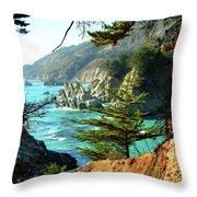 Big Sur Vista Throw Pillow by Charlene Mitchell