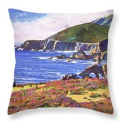 Big Sur Wildflowers - Plein Air Throw Pillow