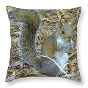 Big Tail Little Nut Throw Pillow