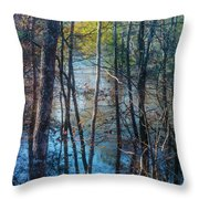 Big Thicket Water Reflection Throw Pillow