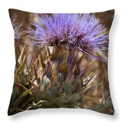 Big Thistle 2 Throw Pillow