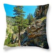 Big Thompson Canyon Pre Flood Moment 2 Throw Pillow