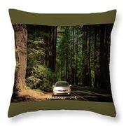 Big Tree Road Throw Pillow