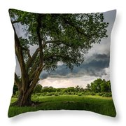 Big Tree - Tall Cottonwood And Storm In Texas Panhandle Throw Pillow