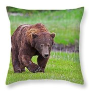 Big Ugly Grizzly Boar Claws Throw Pillow