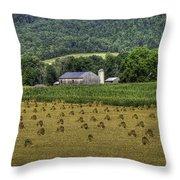 Big Valley Farm Throw Pillow