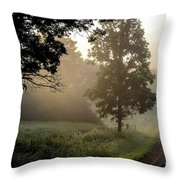 Big Valley Mist  Throw Pillow