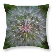 Big Wish Throw Pillow