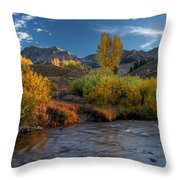 Big Wood River Color Throw Pillow