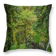 Bigfoot Country Throw Pillow