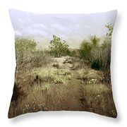 Bike Path Brown Throw Pillow