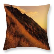 Biking At Sunset Throw Pillow