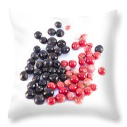 Bilberries And Cowberries Isolated Throw Pillow