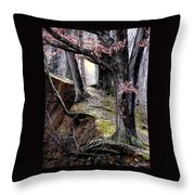 Bilbow's Path Throw Pillow